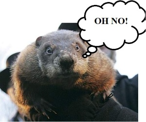 The Groundhog has spoken.