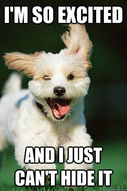 excited puppy.jpg
