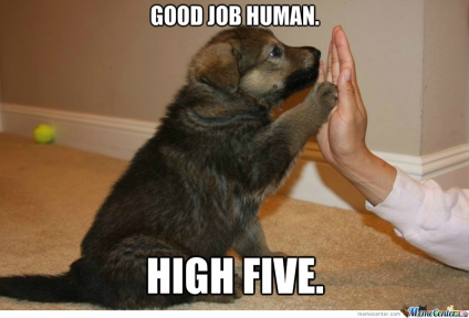 good job human.jpg